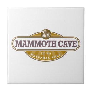 Mammoth Cave National Park Ceramic Tile