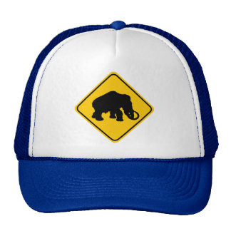 Mammoth Crossing Trucker Hats