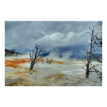 Mammoth Hot Springs Posters