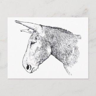 Mammoth Jack Donkey postcard