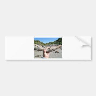 mammoth tusk bumper sticker