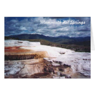 Mammouth Hot Springs Card
