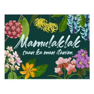 """Mamulaklak"" (Bloom) Filipino Motivational Postcard"