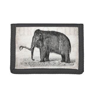 Mamuts lanosos del ejemplo del mamut lanoso del vi