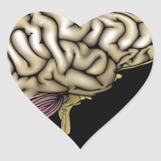 Man brain concept heart sticker
