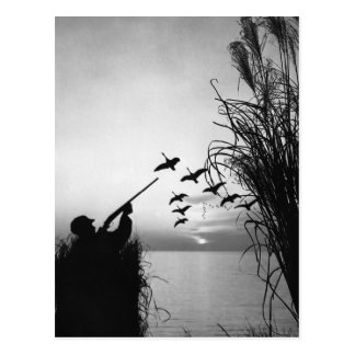Man Duck Hunting Postcard