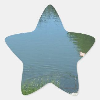 Man fly fishing on a mountain lake star sticker