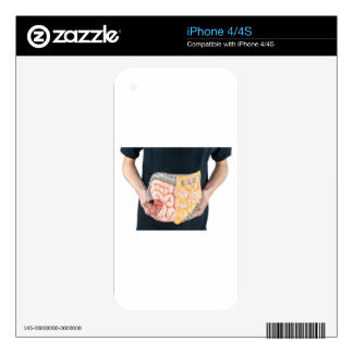 Man holding model of human intestines or bowels decals for iPhone 4