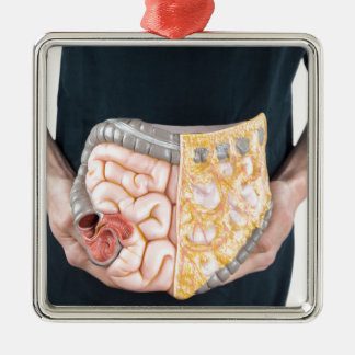 Man holding model of human intestines or bowels metal ornament