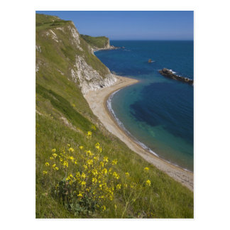 Man o War Bay, Jurassic Coast, Lulworth, Dorset, Postcard