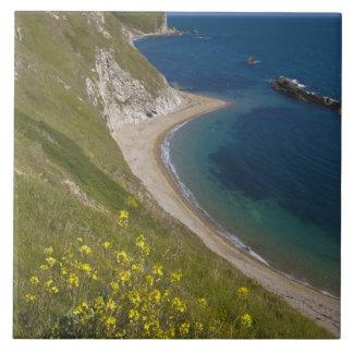 Man o War Bay, Jurassic Coast, Lulworth, Dorset, Tile