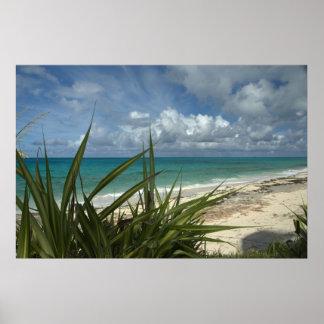 Man-O-War Cay Poster