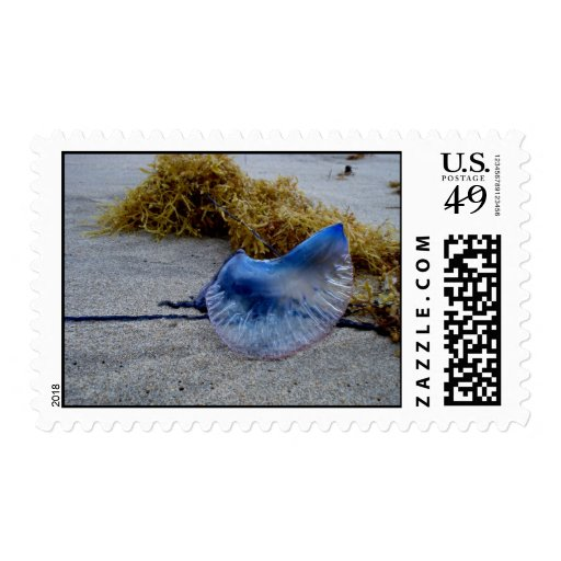 Man o' War Stamp