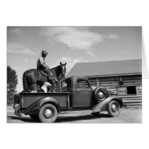 Man on a horse with a dog in a truck cards