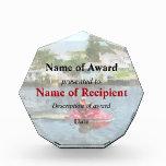 Man on Jet Ski Acrylic Award