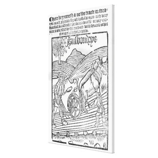 Man Ploughing a Field Gallery Wrapped Canvas
