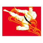 Man practicing martial arts, performing mid air postcard