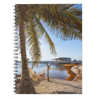 Man Relaxing In A Hammock Under Palm Tree, Belize Notebook