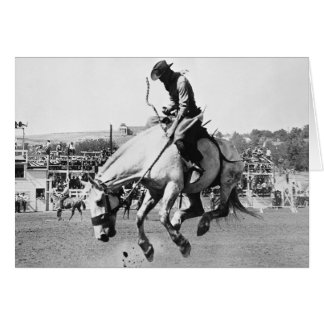 Man riding bucking horse in rodeo greeting cards