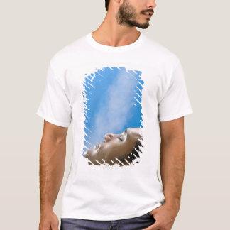 Man under steam faucet at spa T-Shirt
