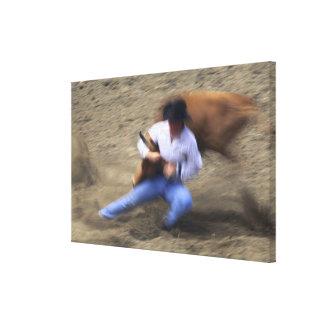 Man wrestling bull canvas prints