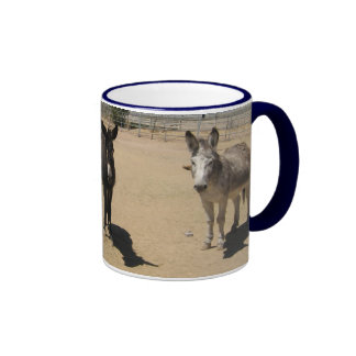 Manada amistosa del burro tazas de café