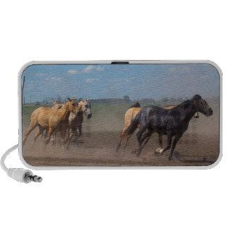 Manada corriente del caballo notebook altavoces