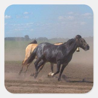 Manada corriente del caballo calcomanías cuadradass personalizadas
