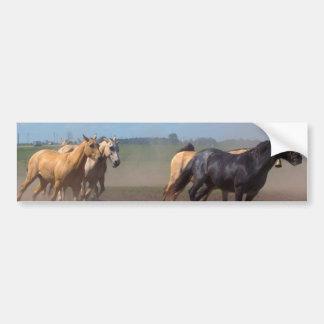 Manada corriente del caballo pegatina para auto