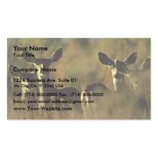 Manada de ciervo mula tarjeta de visita
