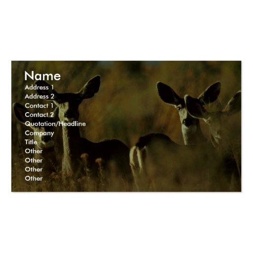 Manada de ciervo mula tarjeta personal