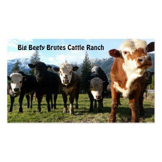 Manada de ganado en granja del país tarjetas de visita