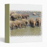Manada de la carpeta de los elefantes