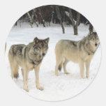 Manada de lobos etiqueta redonda