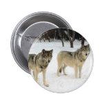 Manada de lobos pins