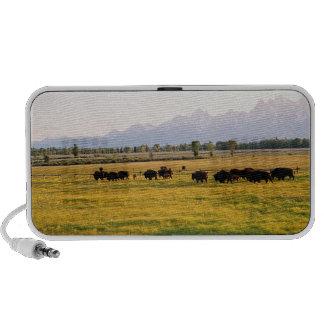 Manada del bisonte de Montana Altavoces