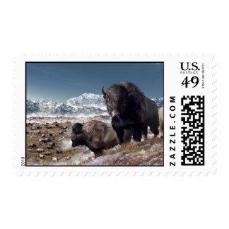 Manada del bisonte en invierno envio