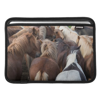 Manada del caballo islandés funda  MacBook