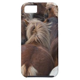 Manada del caballo islandés funda para iPhone SE/5/5s
