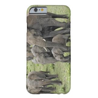 Manada del elefante africano, africana del funda de iPhone 6 barely there