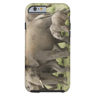 Manada del elefante africano, africana del funda de iPhone 6 tough