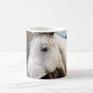 Manada del primer de caballos taza básica blanca