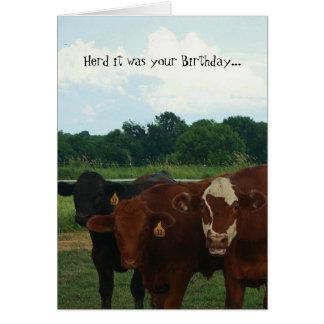 Manada era su tarjeta de la vaca del cumpleaños