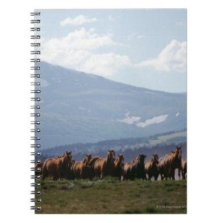 Manada móvil del vaquero de caballos cuadernos