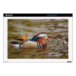 "Manadarin-duck-on-water107 17"" Laptop Decal"