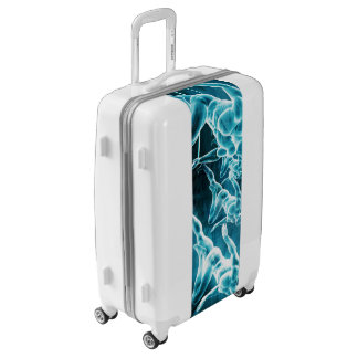 Management Solution Abstract as a Business Concept Luggage