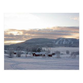 Mañana #1 del invierno postales