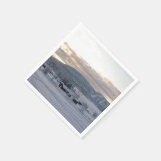 Mañana #1 del invierno servilletas de papel