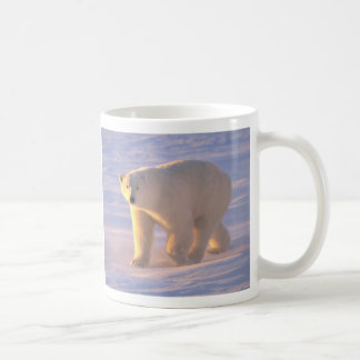 Mañana 2 del oso polar tazas de café