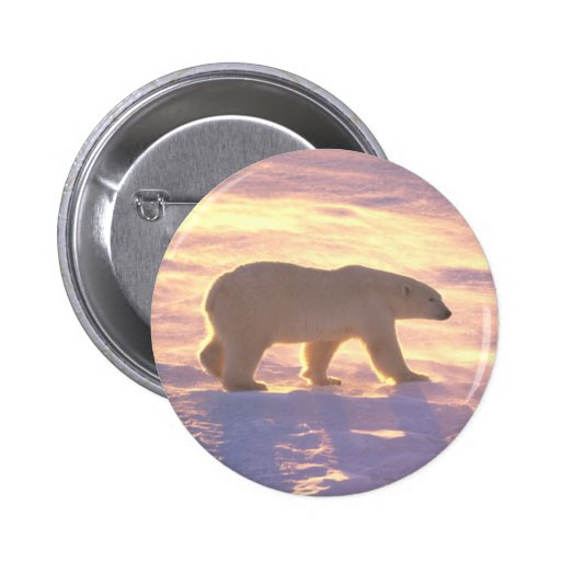 Mañana 3 del oso polar pin redondo 5 cm